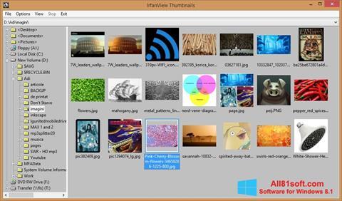 스크린 샷 IrfanView Windows 8.1