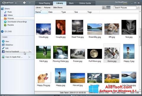 스크린 샷 RealPlayer Windows 8.1